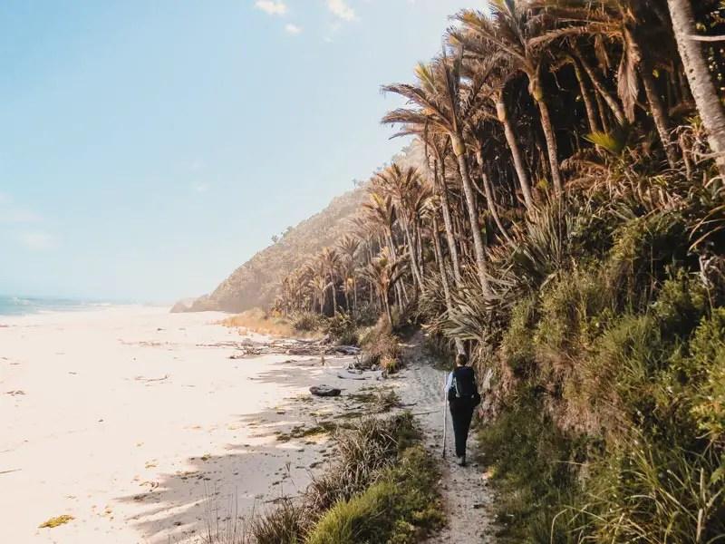 Neuseeland Wanderungen Heaphy Track