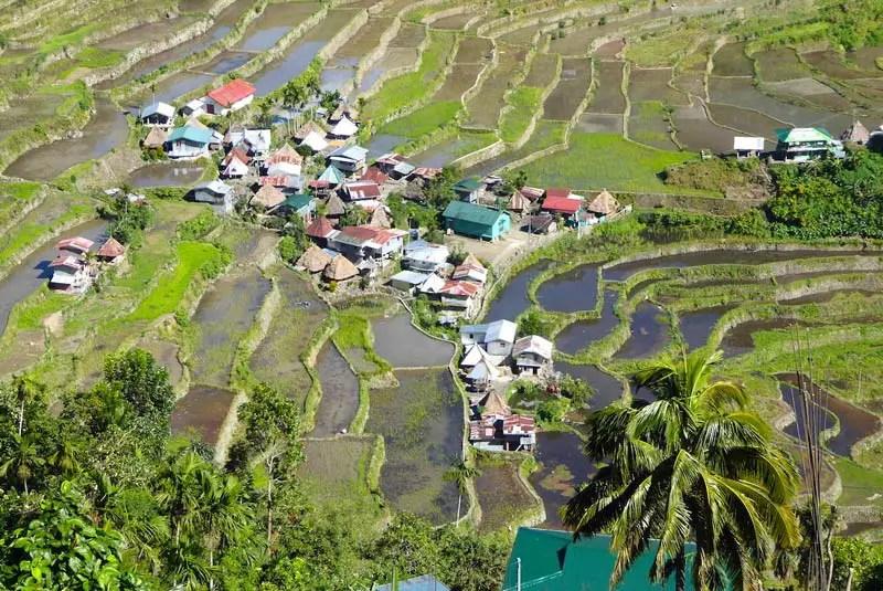 Reisfelder auf den Philippinen