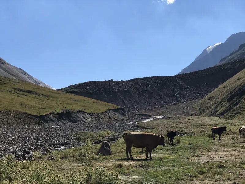 Erdrutsch beim Trekking in Kirgistan