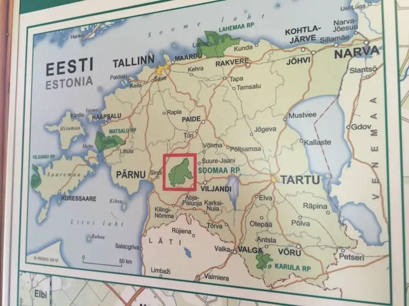 estland_soomaa-nationalpark_IMG_8224