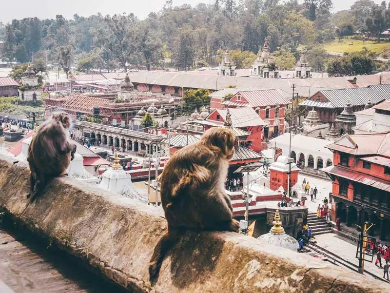 Kathmandu Sehenswürdigkeiten Pashupatinath