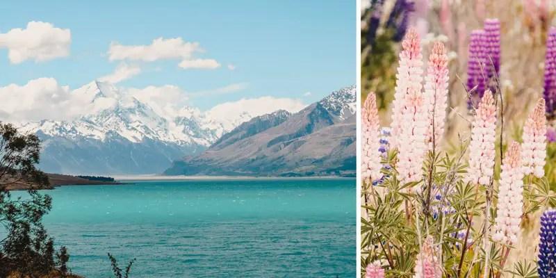 Neuseeland Südinsel Highlights