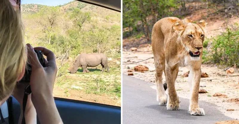Reiseziele November Südafrika