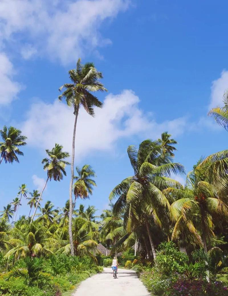 Lunion Estate – Seychellen Sehenswürdigkeiten