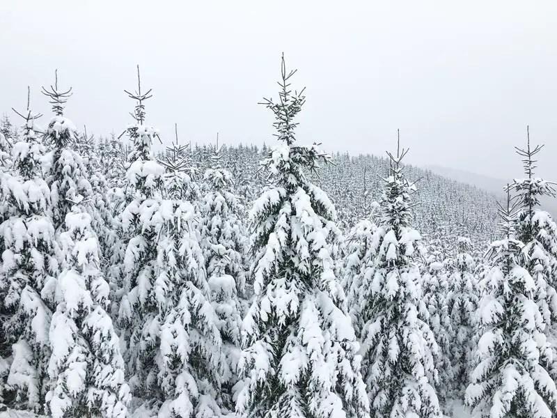 skiurlaub_tschechien_10
