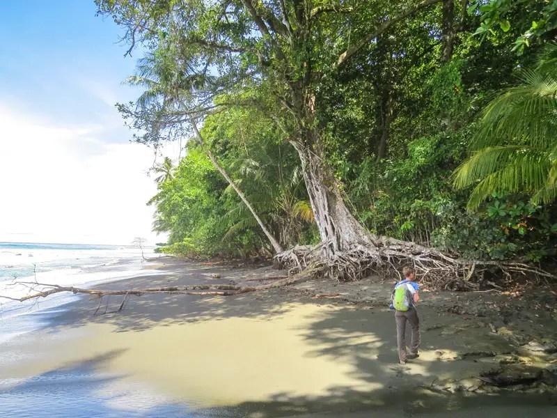 Costa Rica Karte Sehenswurdigkeiten.Die 8 Besten Costa Rica Sehenswurdigkeiten Highlights