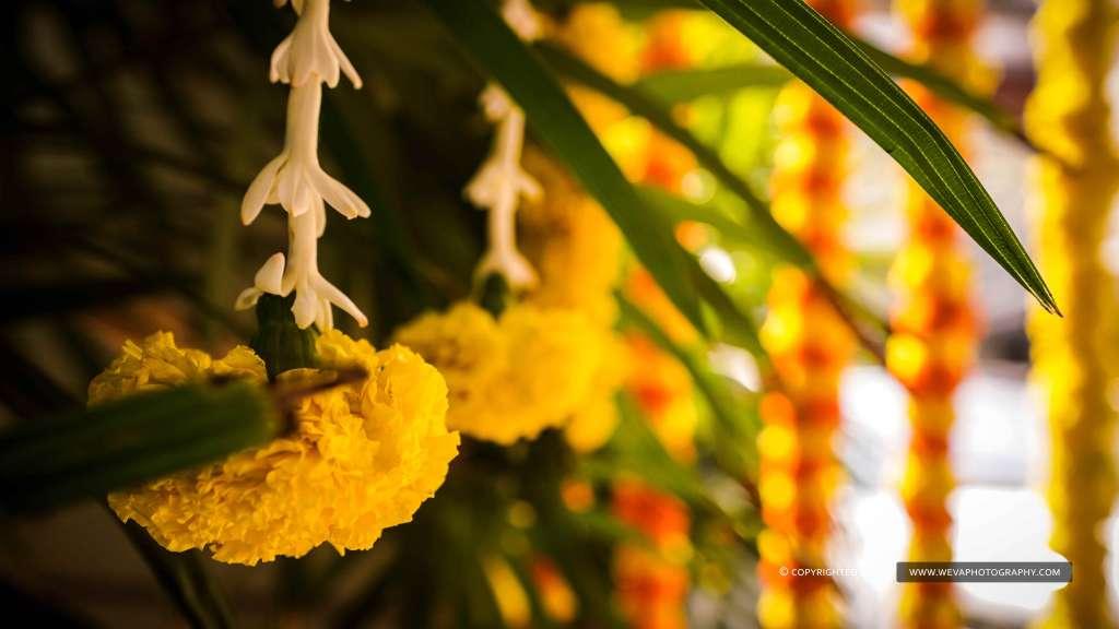 Haldi Photography Of Kavya