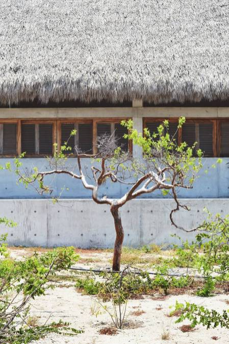 casa-wabi18-900x1350