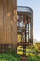paarman-tree-house-by-mv-architecture-residential_dezeen_2364_col_13-1050x1575