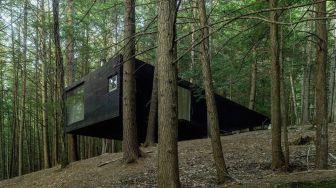 Cabin_Black_Forest_1