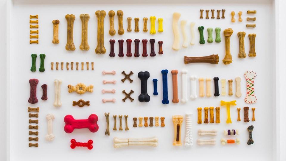bones collection