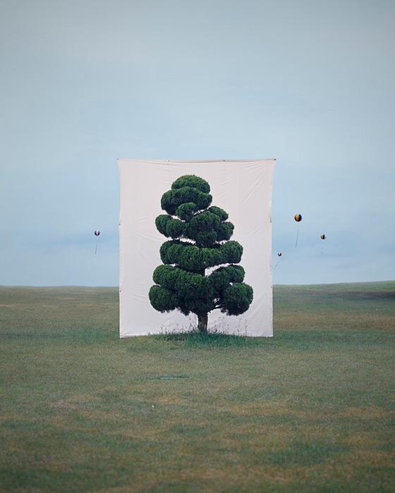 1.Myoung Ho Lee,  tree, contemporary (he)art, contemporary art, wevux, giulia serafin, arte contemporanea, alberi, natura, fotografia, tele, paesaggio, nature, photograpy, canvas, landscape, minimal, surreal, surreale, Corea, korean artist