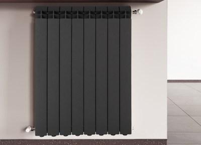 RADIATORE CAST IRON RADIATOR WEVUX calorifero scuro