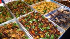 eat to live_wevux_elena locatelli (11)