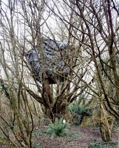 4 -tree house