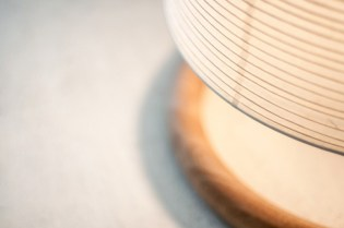 trans-lamp-collection_230415_08-800x531