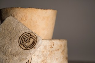 The-Growing-Lab-Mycelia-©Officina-Corpuscoli-_-Maurizio-Montalti-OC-detail1