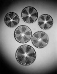 "Carl Strüwe, ""Diatoms Actinoptychus heliopelta"" (1928)"