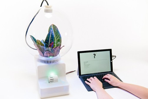 helene-steiner-project-florence-microsoft-research-designboom-06-818x545