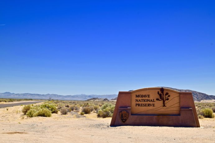 mojave-national-preserve-california-2