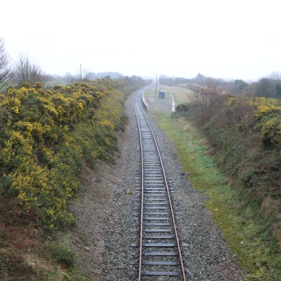 Ballycullane Railway Station 2017-02-22 08.45.16 (26)