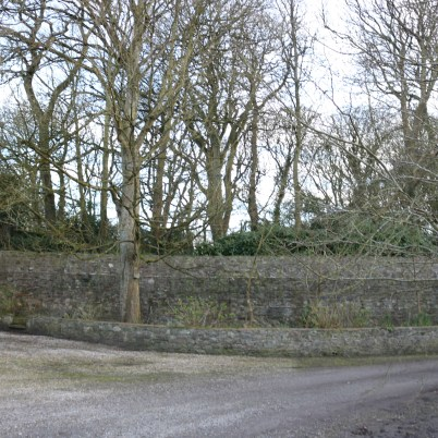 Ballytrent House 2017-03-02 16.15.31 (59)