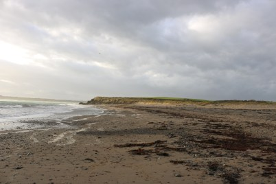 Bannow Beach, Carrick 2017-02-21 16.19.17 (8)