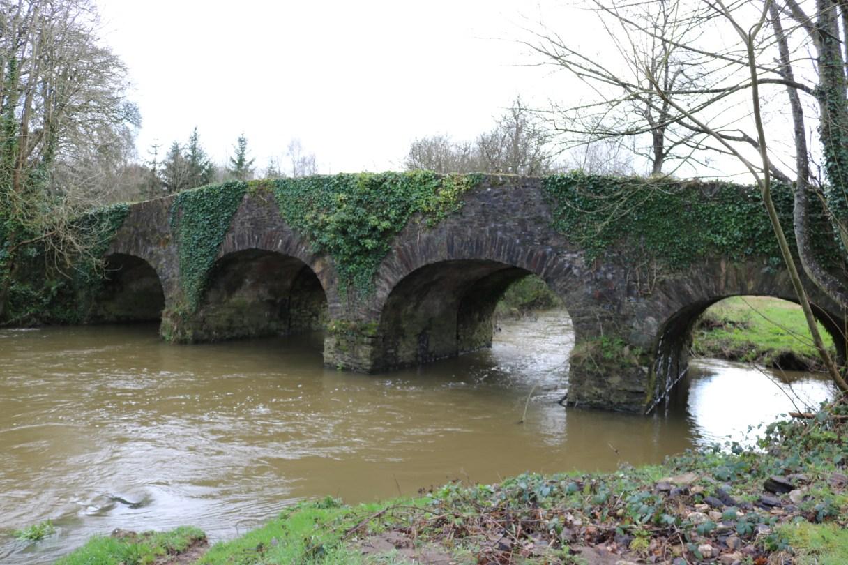Boro River Enniscorthy 2017-03-03 (3)