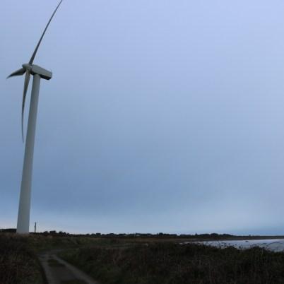 Carnsore Windfarm 2017-02-28 08.27.15 (8)