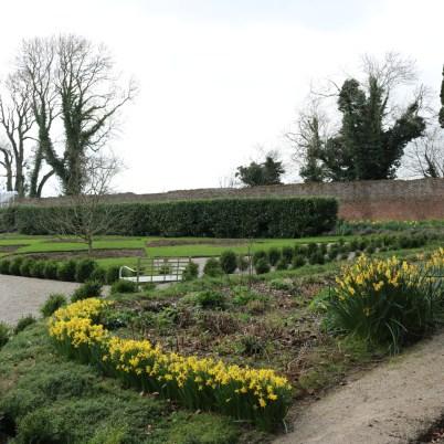Colclough Gardens, Tintern Abbey 2017-02-21 14.58.35 (33)