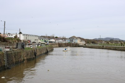 Courtown Harbour 2017-03-02 11.44.26 (3)