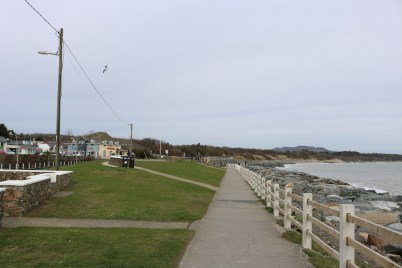Courtown Harbour 2017-03-02 11.44.26 (5)