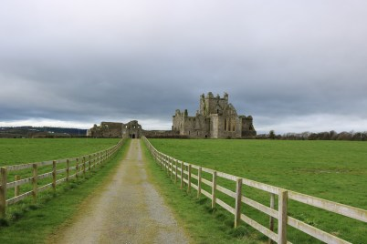 Dunbrody Abbey, Campile 2017-02-20 13.56.06 (60)
