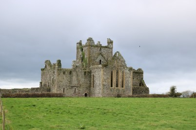 Dunbrody Abbey, Campile 2017-02-20 13.56.06 (61)