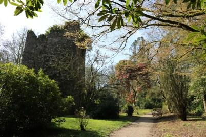 Johnstown Castle Gardens 2017-03-27 11.06.06 (29)