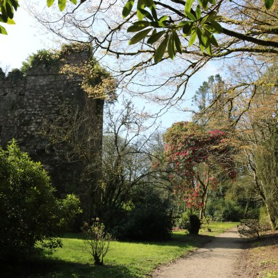 Johnstown Castle Gardens 2017-03-27 11.06.06 (29)