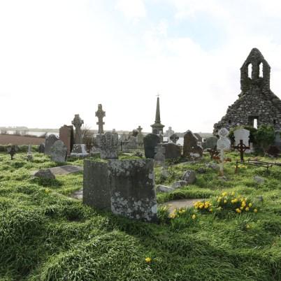 Lady's Island Cemetery 2017-03-02 15.49.25 (7)