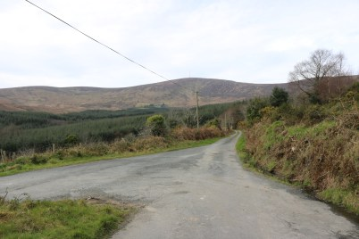 Mount Leinster Ballycrystal Blackstairs Mountains 2017-03-09 (1)
