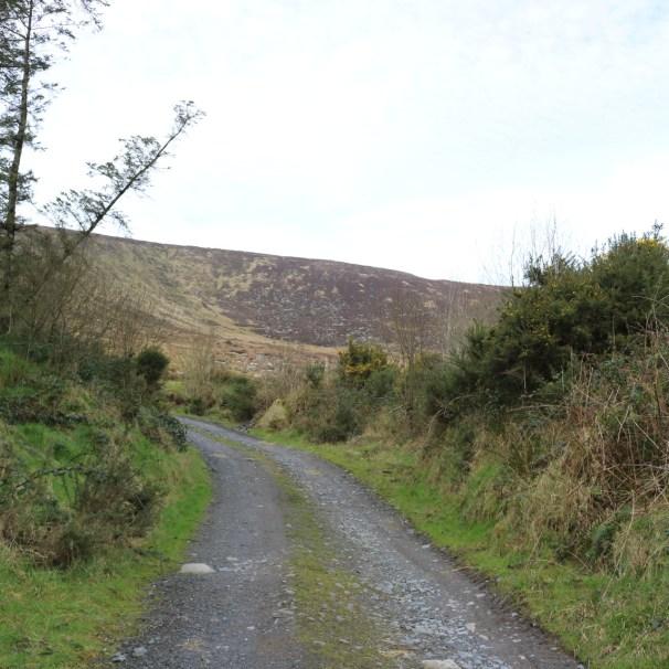 Mount Leinster Ballycrystal Blackstairs Mountains 2017-03-09 (4)