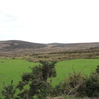 Mount Leinster Ballycrystal Blackstairs Mountains 2017-03-09 (6)