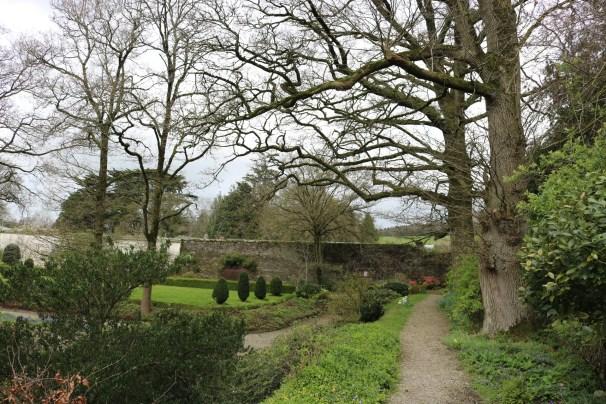 Newtownbarry Gardens Bunclody 2017-03-28 13.07.02 (37)