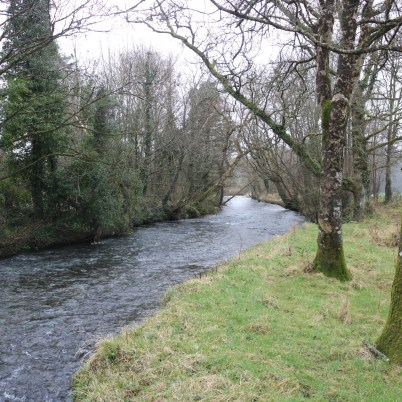 Owenduff River 2017-02-22 (2)