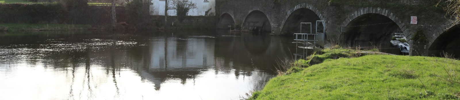 Slaney River, Clohamon