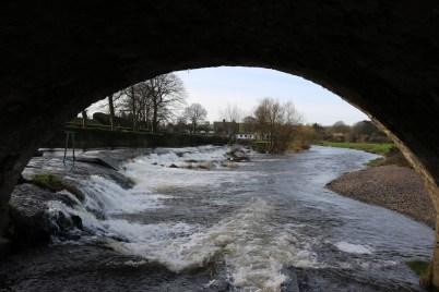 Slaney River Clohamon 2017-03-02 (6)
