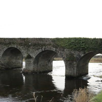 Slaney River, Scarawalsh Bridge 2017-03-02 (5)