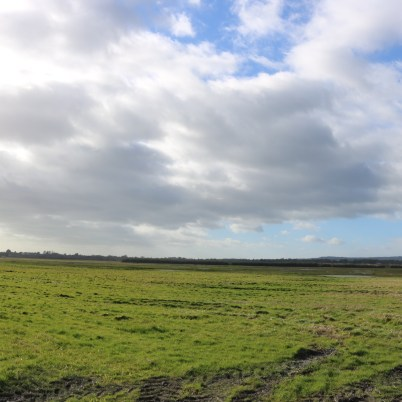 South Sloblands, Wexford 2017-02-28 14.39.18 (16)