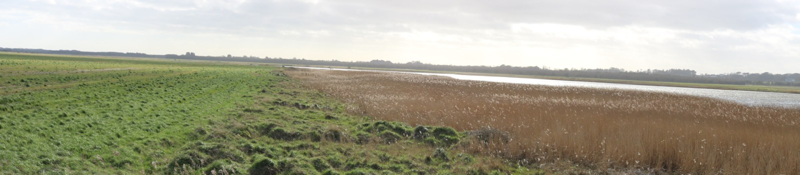 South Sloblands, Wexford
