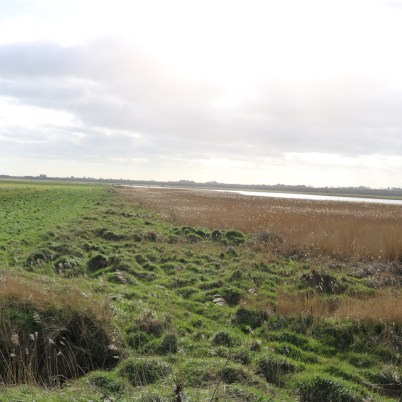 South Sloblands, Wexford 2017-02-28 14.39.18 (26)