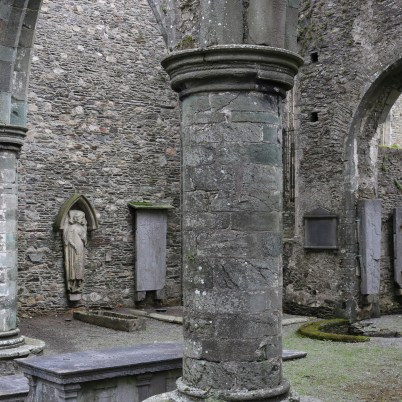 St. Mary's Abbey New Ross 2017-02-20 10.30.52 (35)