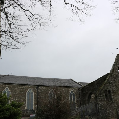 St. Mary's Abbey New Ross 2017-02-20 10.30.52 (41)